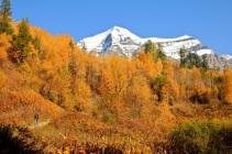 British Columbia in fall